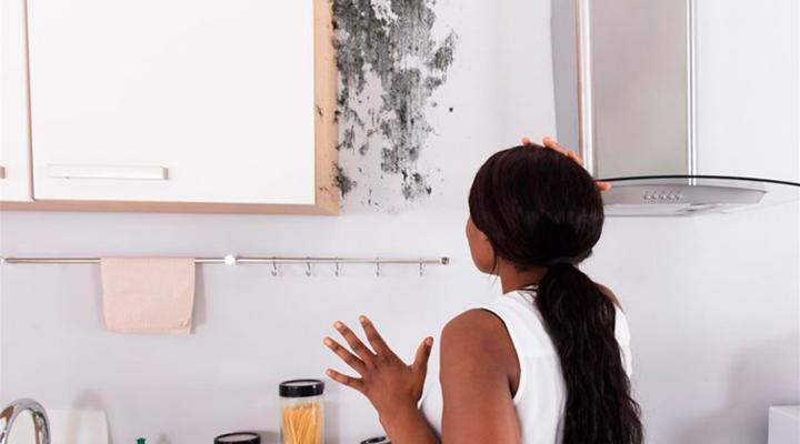 Quanto custa reparar problemas de infiltração casa